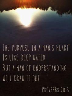 proverbs 20-5